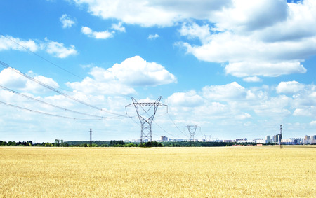 against the current: Power line that goes to the city through wheat field on a background of blue sky