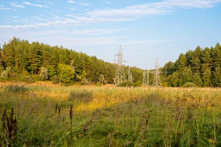 Power line with metal supports on spruce forest background and blue sky Stok Fotoğraf