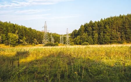 Power line with metal supports on spruce forest background and blue sky Фото со стока