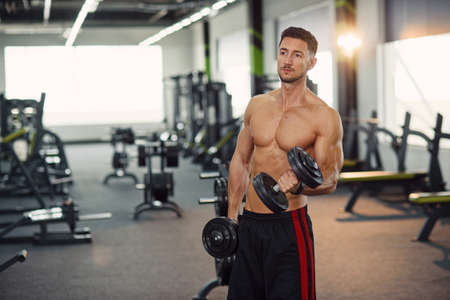Healthy man doing biceps exercises with dumbbells on the training in modern gym.