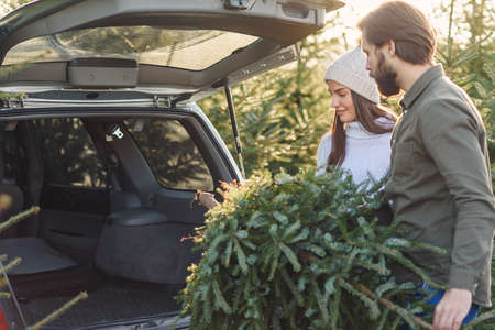 Lovely cheerful young couple putting into car trunk beautiful fir tree at Christmas tree plantings, back view.