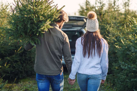 Back view of a beautiful young couple carrying a beautiful Christmas tree to their car among the fir tree plantations. 免版税图像