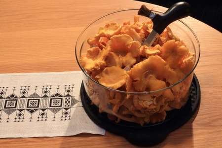 gutted: A bowl with newly harvested chanterelles looke on by farm animals, gutted and ready for the stove,