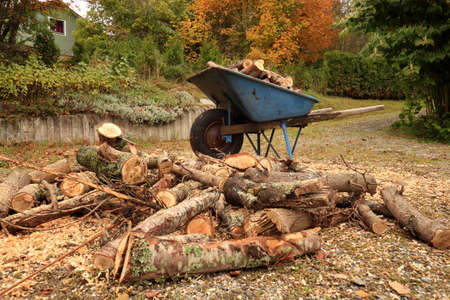 wheelbarrow loaded with firewood in autumn, Town of Tmraa, Sweden Stock Photo - 23770123
