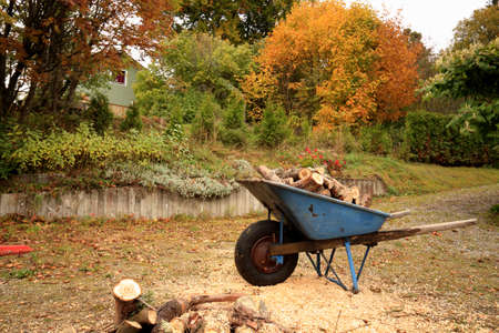 coulorful: wheelbarrow loaded with firewood in autumn, Town of Tmraa, Sweden Stock Photo
