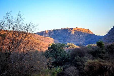uttar pradesh: The jungle will soon go back to sleep hiding the tiger  somewhere in the landscapeRanthambore  Uttar Pradesh India,  02 2013