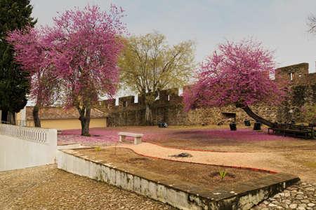 fastness: Old fort in a small village in Portugal. Viana do Alentejo Editorial