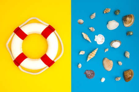 Lifebuoy and shell on a blue background. Travel vacation concept. Summer background. Flat lay, top view