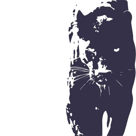 Pantera caminando desde la oscuridad.