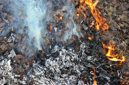 Last year's leaves and dry grass are burned at the stake. A lot of thick white smoke. Fire and Smoke from during Burning of garden waste. Seasonal garden work and backyard clean up concept.