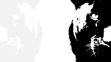 Lion walking from dark design, on white background image, isolated