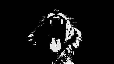 Tiger walking from dark  design, on white background image, isolated Ilustrace