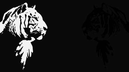 Tiger walking from dark design, on white background image, isolated