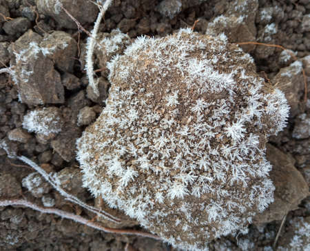 Rime on black soil, frozen clay soil. Brown natural background. Structural fault of the soil. frozen sandy road surface