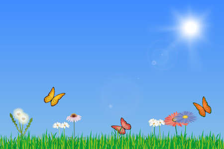 warmer: Luscious green spring meadow with flowers and butterflys