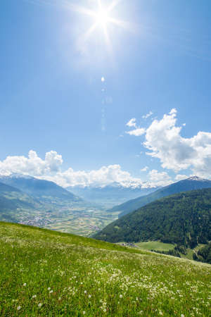 Grean meadow in the mountains Reklamní fotografie