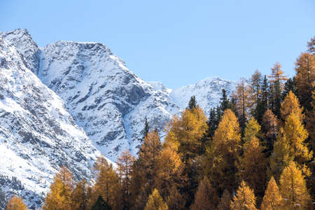Winter and autumn in the mountains (italian alps)