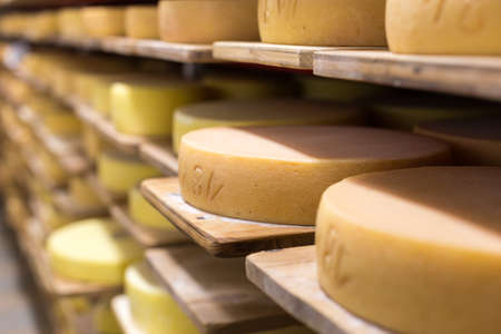 Alp cheese maturation Reklamní fotografie