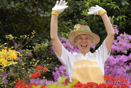 Elderly woman gardening  Stock Photo - 22603473