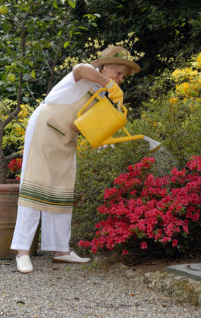Elderly woman watering the plants photo