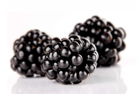 Blackberries isolated on white  Stock Photo