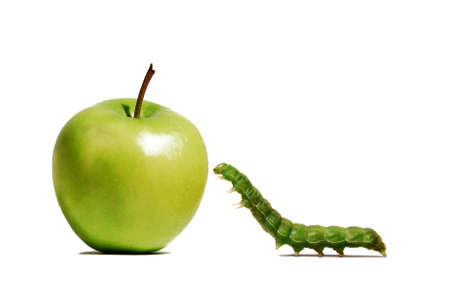 Green worm crawling towards a green apple on white background