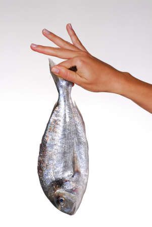 Hand holding a fish photo