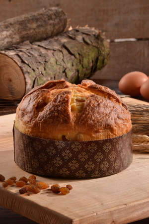 provocative food: Panettone bread and ingredients on rustic wood ambient.Panetone and ingredients.Traditional christmas food.