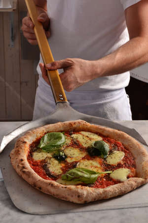 Cook taking out baked margarita pizza from oven Banque d'images