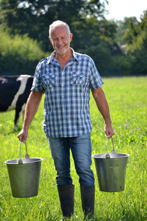 Farmer holding buckets after milking cow Stock Photo