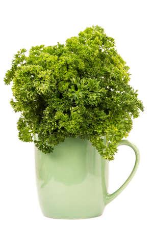 fresh parsley  photo