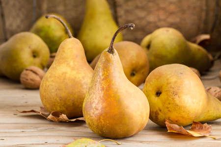 pears 写真素材