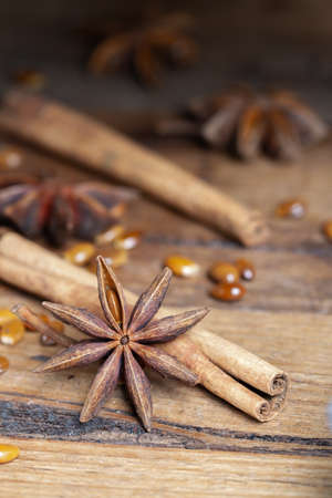 star anise with seeds and cinnamon