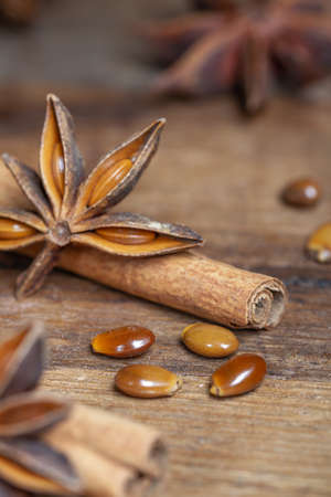 star anise and cinnamon sticks Stock Photo