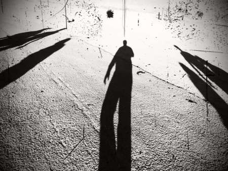 desert sun: shadows under the desert sun