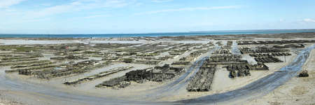 Panoramic view of the oyster beds of Cancale in Ile et Vilaine in Brittany - France photo