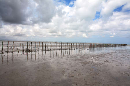 sand mold: Mussel to mussel farming bay of Mont St Michel in Normandy - France Stock Photo