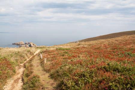 Das Vogelschutzgebiet in Goulien Cap Sizun Finistère in der Bretagne - Frankreich Standard-Bild - 28406699