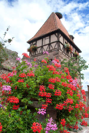 vineyard plain: The Tower of witches Chatenoix in Alsace, Bas Rhin Stock Photo
