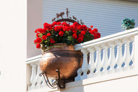 Potted flowers on balcony photo