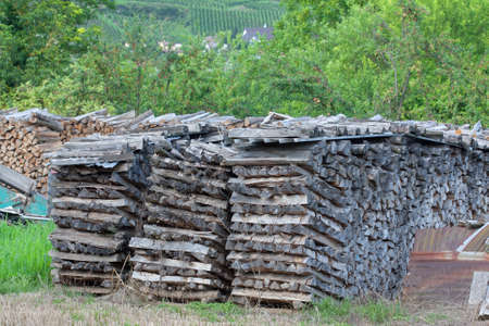 Firewood saw stacked for drying