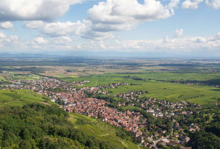 vineyard plain: Panoramic view of Ribeauville, Haut Rhin, Alsace