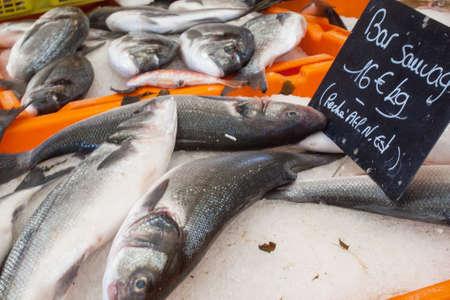 wine trade: Sale of fish
