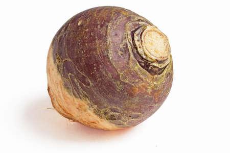 local supply: Large turnip on white background