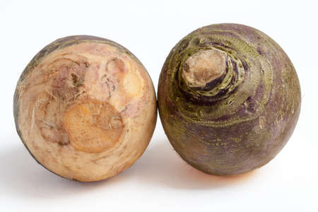 local supply: Two large turnips on white background