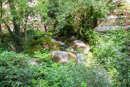 green been: Natural decor with waterfall in a park