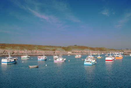 lobster boat: Flotilla of fishing boats, the Conquet, Finistre, Brittany, France