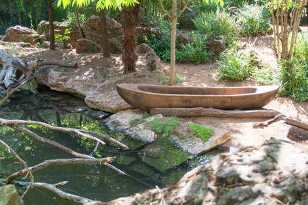 dcor: Exotic dcor in a public garden Stock Photo