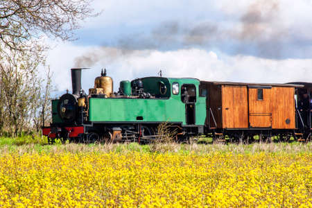 Steam locomotive in the countryside behind a rapeseed field, historical monument, Baie de Somme, Hauts de France