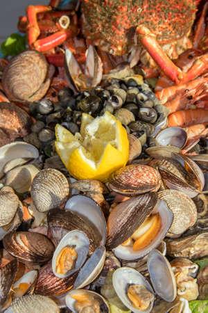 Seafood platter Stock fotó